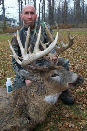 The Bedell Buck