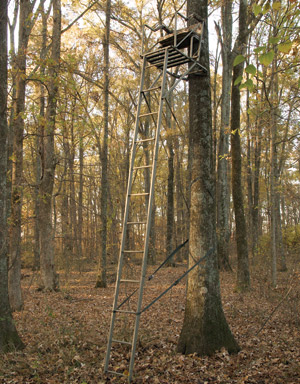 Wooden Deer Stands http://www.nyantler-outdoors.com/ladder-tree-stands.html